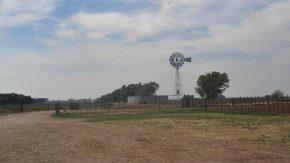 Mesa agroalimentaria