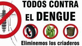 A frenar el dengue
