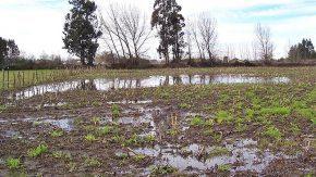 La emergencia agropecuaria de la provincia será homologada a nivel nacional