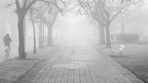 Advierten por bancos de niebla
