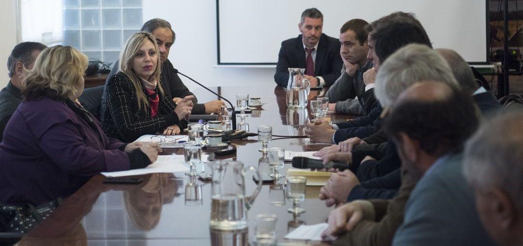 ACNUN JUNTO A LA MESA NACIONAL DE PRODUCCIÓN PORCINA