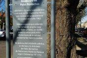 La Arboleda de Palos Borrachos fue declarada Patrimonio Histórico Natural